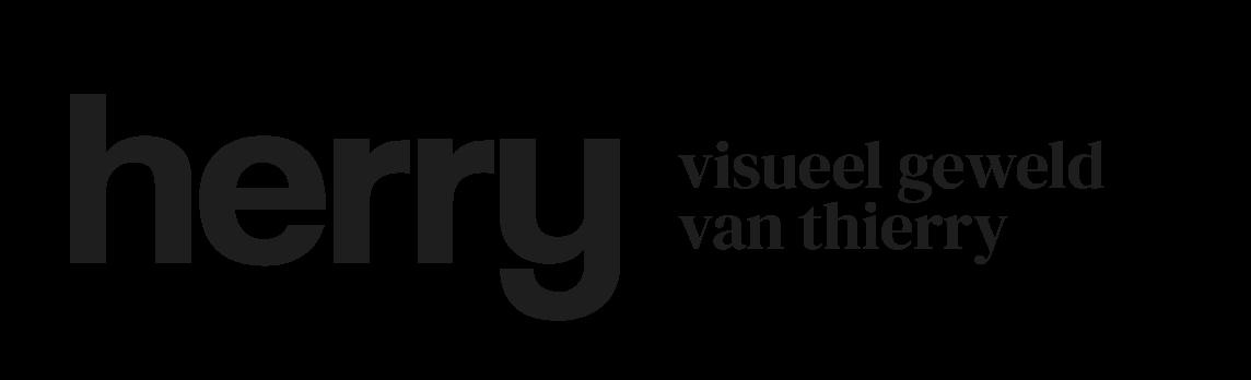thierryvansteenpaal.nl